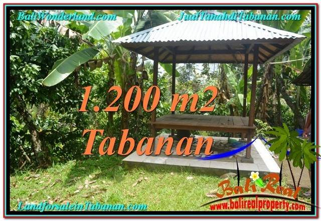 Affordable PROPERTY 1,200 m2 LAND SALE IN TABANAN BALI TJTB294
