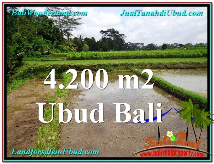 Magnificent 4,200 m2 LAND SALE IN UBUD BALI TJUB561