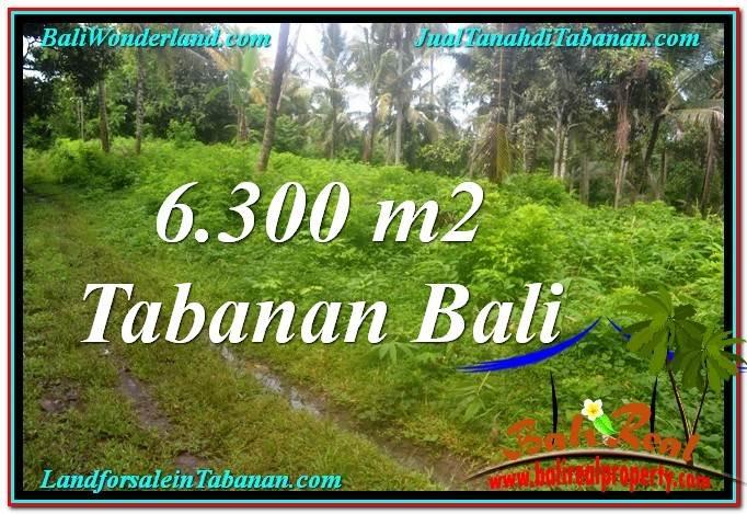 Magnificent TABANAN LAND FOR SALE TJTB313