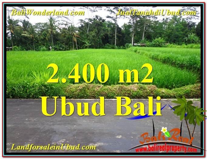 Magnificent 2,800 m2 LAND SALE IN UBUD BALI TJUB563