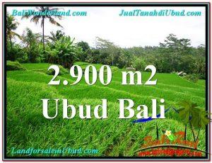 2,900 m2 LAND SALE IN UBUD TJUB564
