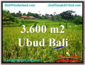 Magnificent 3,600 m2 LAND IN UBUD BALI FOR SALE TJUB566