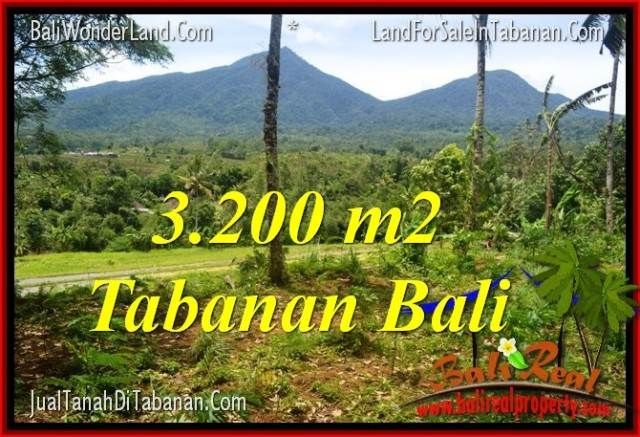 Affordable 3,200 m2 LAND IN TABANAN FOR SALE TJTB319