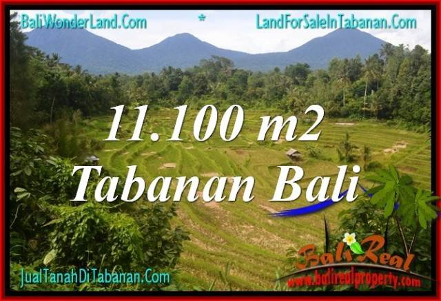 Affordable PROPERTY 11,100 m2 LAND FOR SALE IN Tabanan Penebel BALI TJTB320