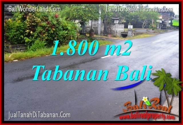 FOR SALE Exotic LAND IN Tabanan Kota BALI TJTB321