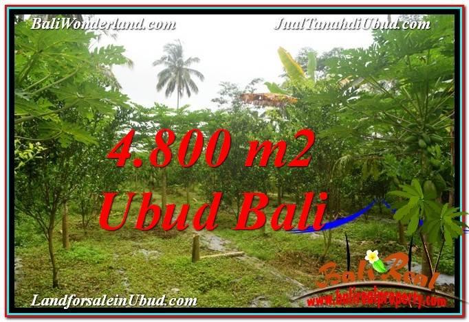 FOR SALE Affordable LAND IN Ubud Payangan BALI TJUB571