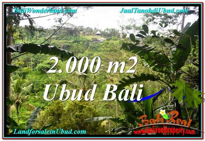 Magnificent LAND FOR SALE IN UBUD TJUB573