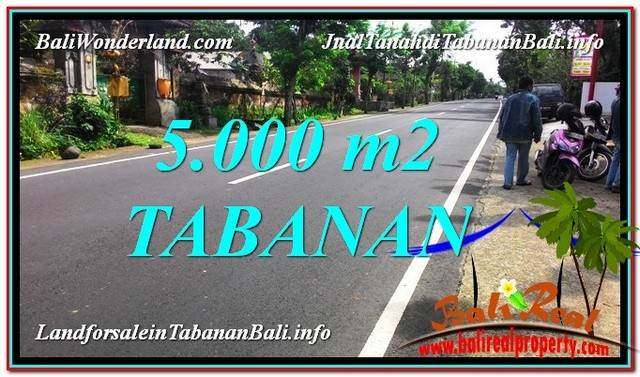 Exotic 5,000 m2 LAND SALE IN Badung BALI TJTB332
