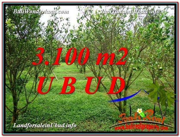 FOR SALE Magnificent 3,100 m2 LAND IN UBUD BALI TJUB593