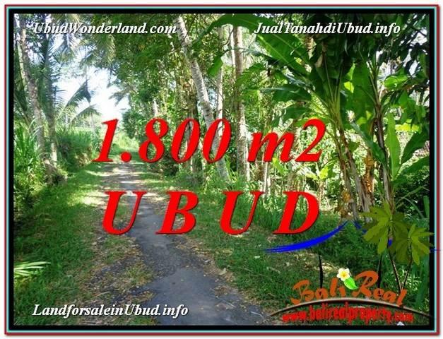 Exotic 1,800 m2 LAND SALE IN UBUD BALI TJUB597