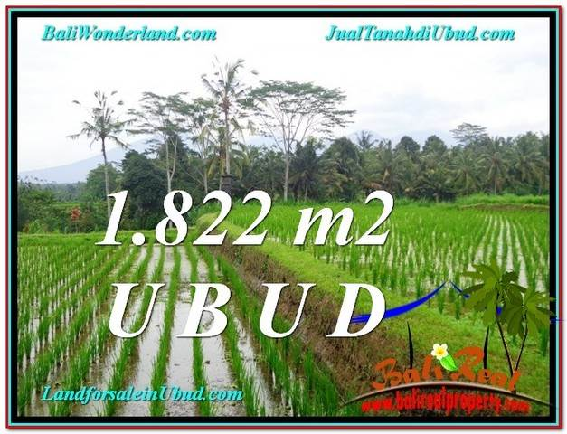 Exotic PROPERTY 1,822 m2 LAND SALE IN UBUD BALI TJUB574