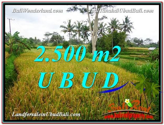 Magnificent LAND FOR SALE IN UBUD TJUB577