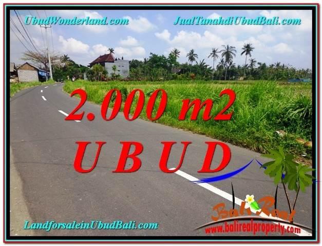 Magnificent LAND SALE IN Sentral Ubud BALI TJUB580