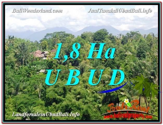 Affordable UBUD BALI 18,000 m2 LAND FOR SALE TJUB589