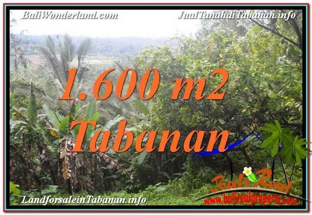 Affordable 1,600 m2 LAND SALE IN TABANAN BALI TJTB348