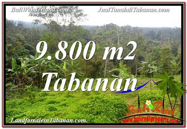FOR SALE Affordable LAND IN Tabanan Selemadeg TJTB350
