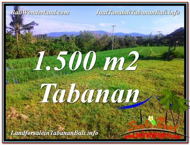Affordable 1,500 m2 LAND SALE IN TABANAN BALI TJTB353