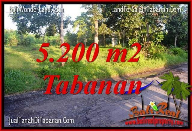 Beautiful PROPERTY 5,200 m2 LAND FOR SALE IN TABANAN BALI TJTB334