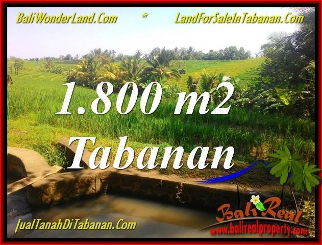 TABANAN BALI 1,800 m2 LAND FOR SALE TJTB338