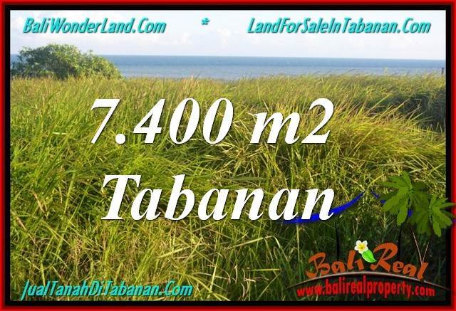 Tabanan Selemadeg BALI LAND FOR SALE TJTB341