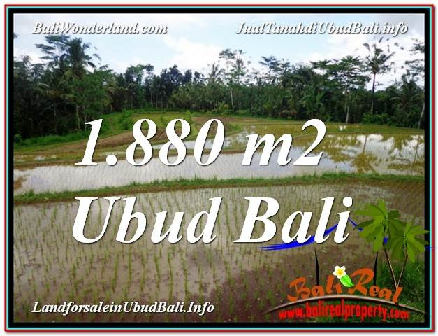 Affordable 1,880 m2 LAND IN UBUD BALI FOR SALE TJUB613