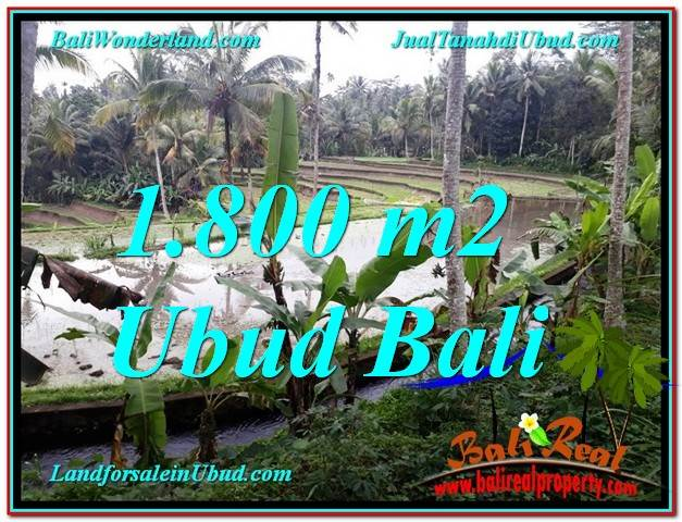 Magnificent LAND SALE IN Ubud Tampak Siring BALI TJUB616