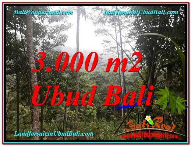 Magnificent 3,000 m2 LAND SALE IN UBUD BALI TJUB617
