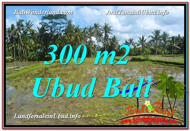FOR SALE Beautiful 300 m2 LAND IN UBUD BALI TJUB619
