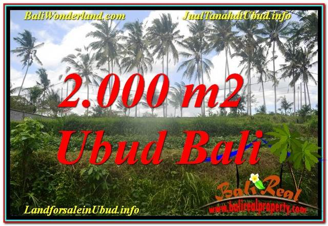 Magnificent PROPERTY Ubud Pejeng 2,000 m2 LAND FOR SALE TJUB625