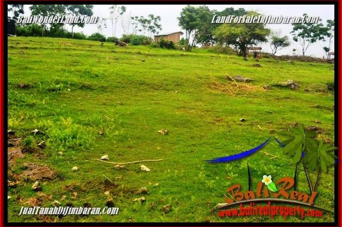 Beautiful 7,500 m2 LAND SALE IN Jimbaran Uluwatu TJJI126