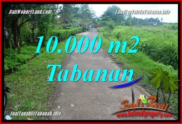 Beautiful TABANAN BALI LAND FOR SALE TJTB354