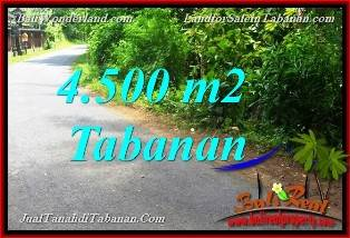 Bali Property Investment, LAND FOR SALE IN TABANAN, LAND IN TABANAN FOR SALE, LAND FOR SALE IN TABANAN Bali, Property for sale in TABANAN, Property in TABANAN for sale, LAND FOR SALE IN BALI, Land in Bali for sale, PROPERTY FOR SALE IN BALI