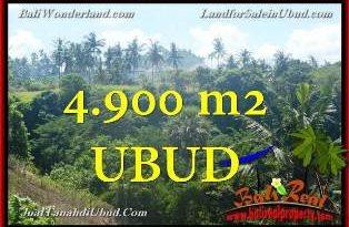Beautiful PROPERTY LAND SALE IN UBUD TJUB665