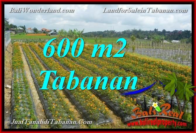 Magnificent PROPERTY Tabanan Bedugul BALI 600 m2 LAND FOR SALE TJTB372