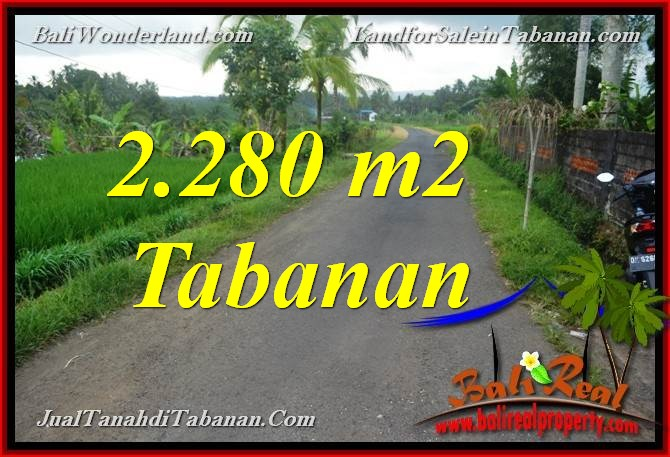 Affordable PROPERTY LAND FOR SALE IN TABANAN Selemadeg BALI TJTB374