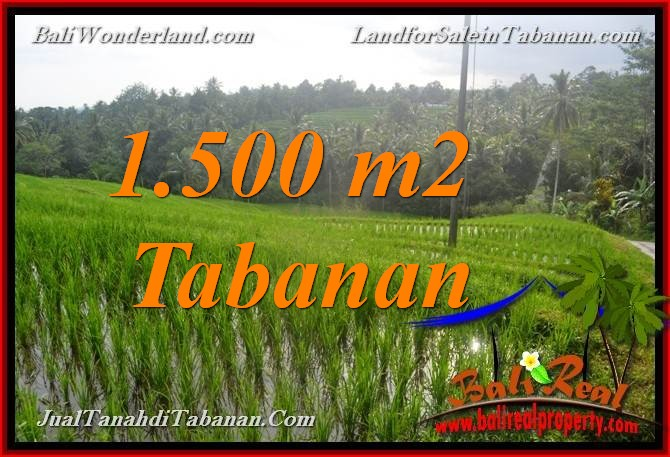 Beautiful PROPERTY LAND FOR SALE IN TABANAN TJTB375