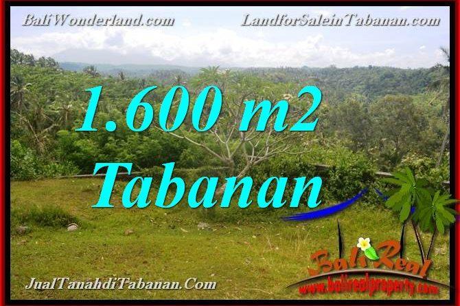 Beautiful PROPERTY 1,600 m2 LAND FOR SALE IN TABANAN Selemadeg BALI TJTB378