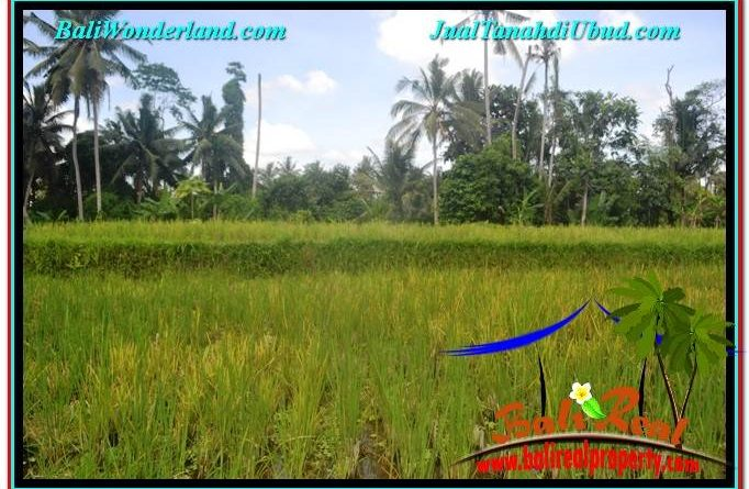 Exotic PROPERTY LAND FOR SALE IN UBUD BALI TJUB649
