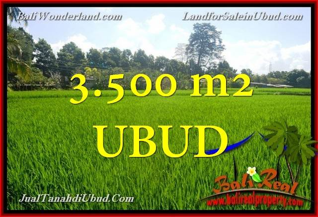 Exotic LAND IN Ubud Gianyar BALI FOR SALE TJUB660