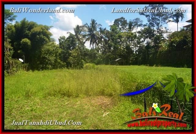 Affordable PROPERTY 2,456 m2 LAND SALE IN UBUD BALI TJUB654