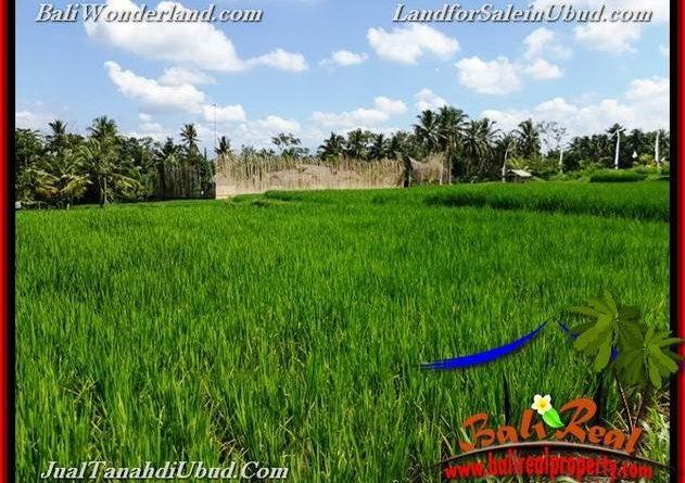 Beautiful Ubud Pejeng BALI LAND FOR SALE TJUB656