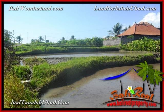 Affordable 400 m2 LAND SALE IN UBUD BALI TJUB659