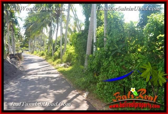 Affordable PROPERTY LAND FOR SALE IN UBUD TJUB660