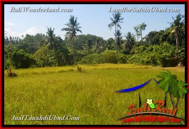 UBUD BALI 4,000 m2 LAND FOR SALE TJUB661