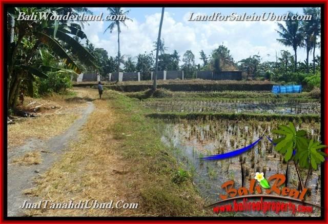 FOR SALE 6,300 m2 LAND IN UBUD TJUB662