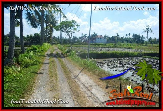 FOR SALE Exotic 1,200 m2 LAND IN UBUD BALI TJUB663