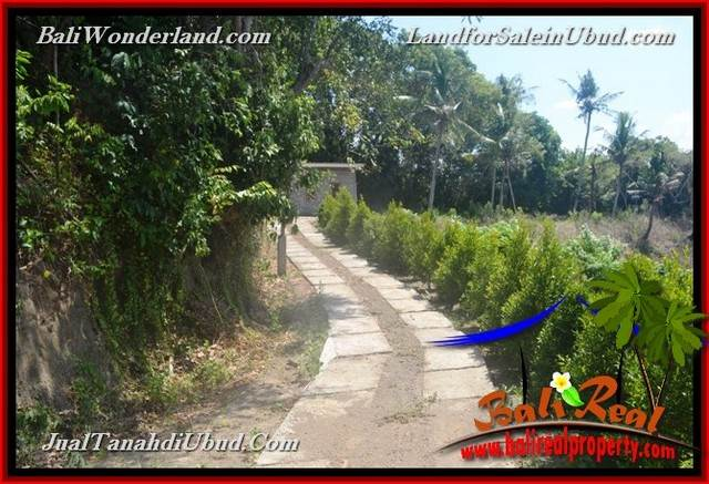 FOR SALE Magnificent PROPERTY 4,900 m2 LAND IN Ubud Gianyar TJUB665