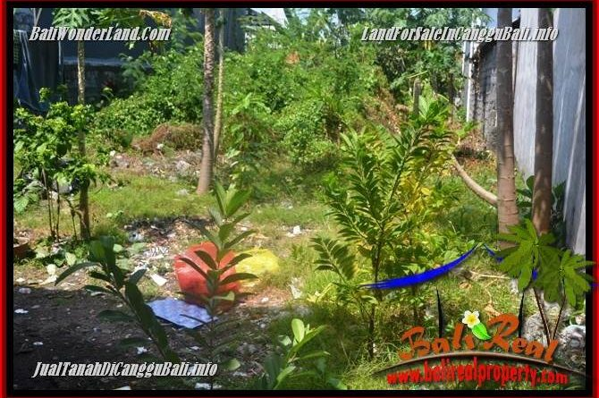 FOR SALE Exotic LAND IN CANGGU BRAWA TJCG224