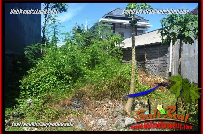 Magnificent LAND FOR SALE IN CANGGU BRAWA BALI TJCG224