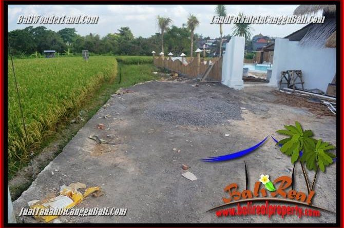 Affordable LAND IN CANGGU BRAWA FOR SALE TJCG229